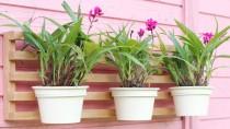 Floreira de Parede Em Madeira Para 3 Vasos