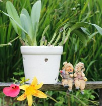 Vaso Furado Para Orquídeas Em Cerâmica Branca