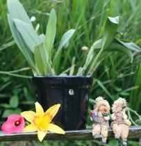 Vaso Furado Para Orquídeas Em Cerâmica Preta