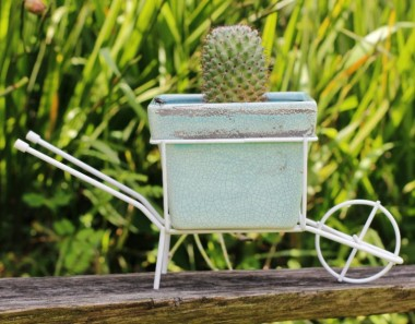 Carrinho de Mão com Vaso de Cerâmica Verde Claro